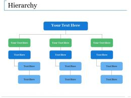 Hierarchy Ppt Model