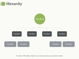 Hierarchy Ppt Pictures Infographic Template
