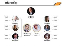 Hierarchy Ppt Portfolio