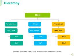 Hierarchy Ppt Portfolio Information