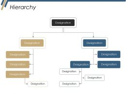 Hierarchy Ppt Professional