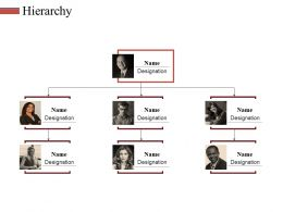 Hierarchy Ppt Slides Graphics Pictures