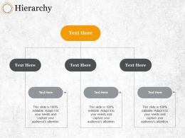 Hierarchy Ppt Summary Designs Download