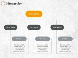 Hierarchy Ppt Summary Designs Download