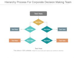 Hierarchy Process For Corporate Decision Making Team Ppt Design