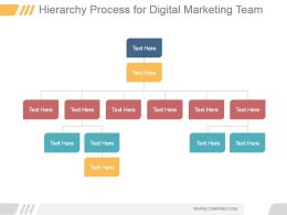 Hierarchy Process For Digital Marketing Team Ppt Slide Examples