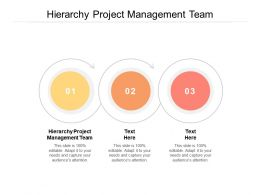 Hierarchy Project Management Team Ppt Powerpoint Presentation Model Sample Cpb