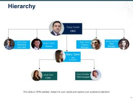Hierarchy Sample Of Ppt