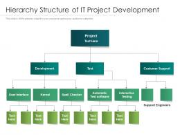 Hierarchy Structure Of It Project Development
