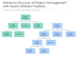 Hierarchy Structure Of Project Management With Teams Different Positions