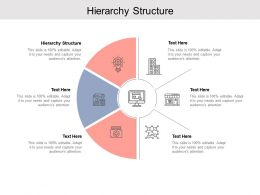 Hierarchy Structure Ppt Powerpoint Presentation Infographics Visuals Cpb