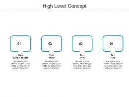 High Level Concept Ppt Powerpoint Presentation Icon Infographic Template Cpb