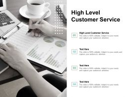 High Level Customer Service Ppt Powerpoint Presentation Infographic Template Templates Cpb