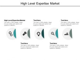High Level Expertise Market Ppt Powerpoint Presentation Gallery Graphics Pictures Cpb