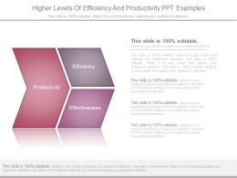 Higher Levels Of Efficiency And Productivity Ppt Examples