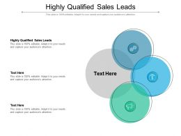 Highly Qualified Sales Leads Ppt Powerpoint Presentation Gallery Examples Cpb