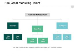Hire Great Marketing Talent Ppt Powerpoint Presentation Infographic Template Information Cpb