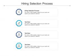 Hiring Selection Process Ppt Powerpoint Presentation File Example File Cpb