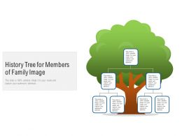 History Tree For Members Of Family Image