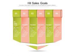 Hit Sales Goals Ppt Powerpoint Presentation Outline Show Cpb