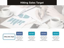 Hitting Sales Target Ppt Powerpoint Presentation Portfolio Visual Aids Cpb