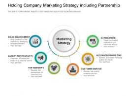 Holding Company Marketing Strategy Including Partnership