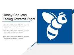 Honey Bee Icon Facing Towards Right