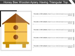 Honey Bee Wooden Apiary Having Triangular Top