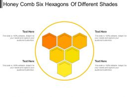 Honey Comb Six Hexagons Of Different Shades