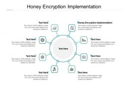 Honey Encryption Implementation Ppt Powerpoint Presentation Infographic Template Rules Cpb