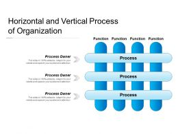 Horizontal And Vertical Process Of Organization