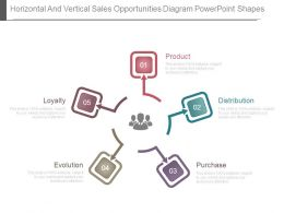 Horizontal And Vertical Sales Opportunities Diagram Powerpoint Shapes