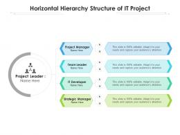 Horizontal Hierarchy Structure Of It Project