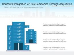 Horizontal Integration Of Two Companies Through Acquisition