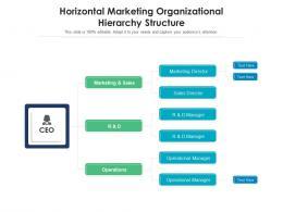 Horizontal Marketing Organizational Hierarchy Structure