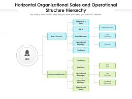 Horizontal Organizational Sales And Operational Structure Hierarchy