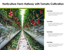 Horticulture Farm Hallway With Tomato Cultivation
