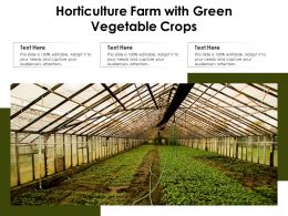 Horticulture Farm With Green Vegetable Crops