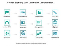 Hospital Branding With Declaration Demonstration Differentiation And Alignment 2