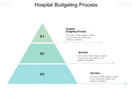 Hospital Budgeting Process Ppt Powerpoint Presentation Inspiration Tips Cpb