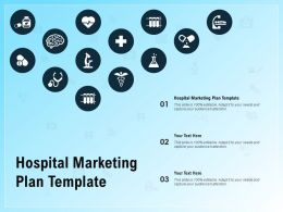 Hospital Marketing Plan Template Ppt Powerpoint Presentation Styles Graphics Pictures