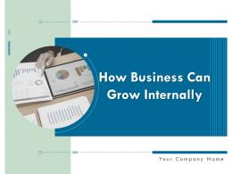 How Business Can Grow Internally Powerpoint Presentation Slides