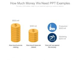 How Much Money We Need Ppt Examples