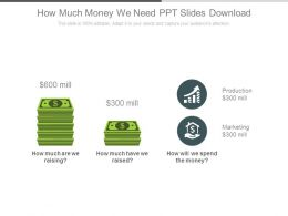 How Much Money We Need Ppt Slides Download