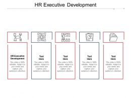 HR Executive Development Ppt Powerpoint Presentation File Master Slide Cpb