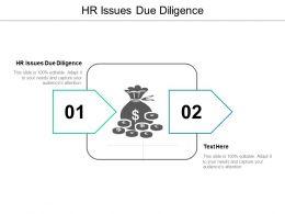 HR Issues Due Diligence Ppt Powerpoint Presentation Styles Introduction Cpb