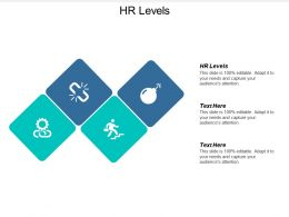 Hr Levels Ppt Powerpoint Presentation Icon Master Slide Cpb