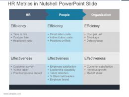 Hr Metrics In Nutshell Powerpoint Slide