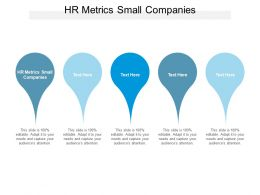 Hr Metrics Small Companies Ppt Powerpoint Presentation Background Images Cpb