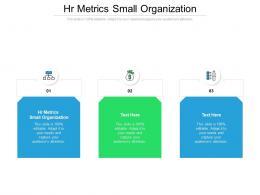 HR Metrics Small Organization Ppt Powerpoint Presentation Portfolio Topics Cpb